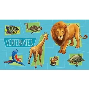 LeapStart® Amazing Animals with Conservation 30+ Page Activity Book Ages 4-6 yrs.